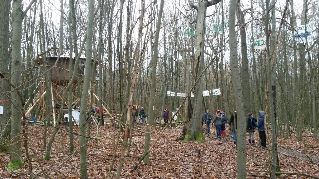 Dannenröder Forst Mahnwache